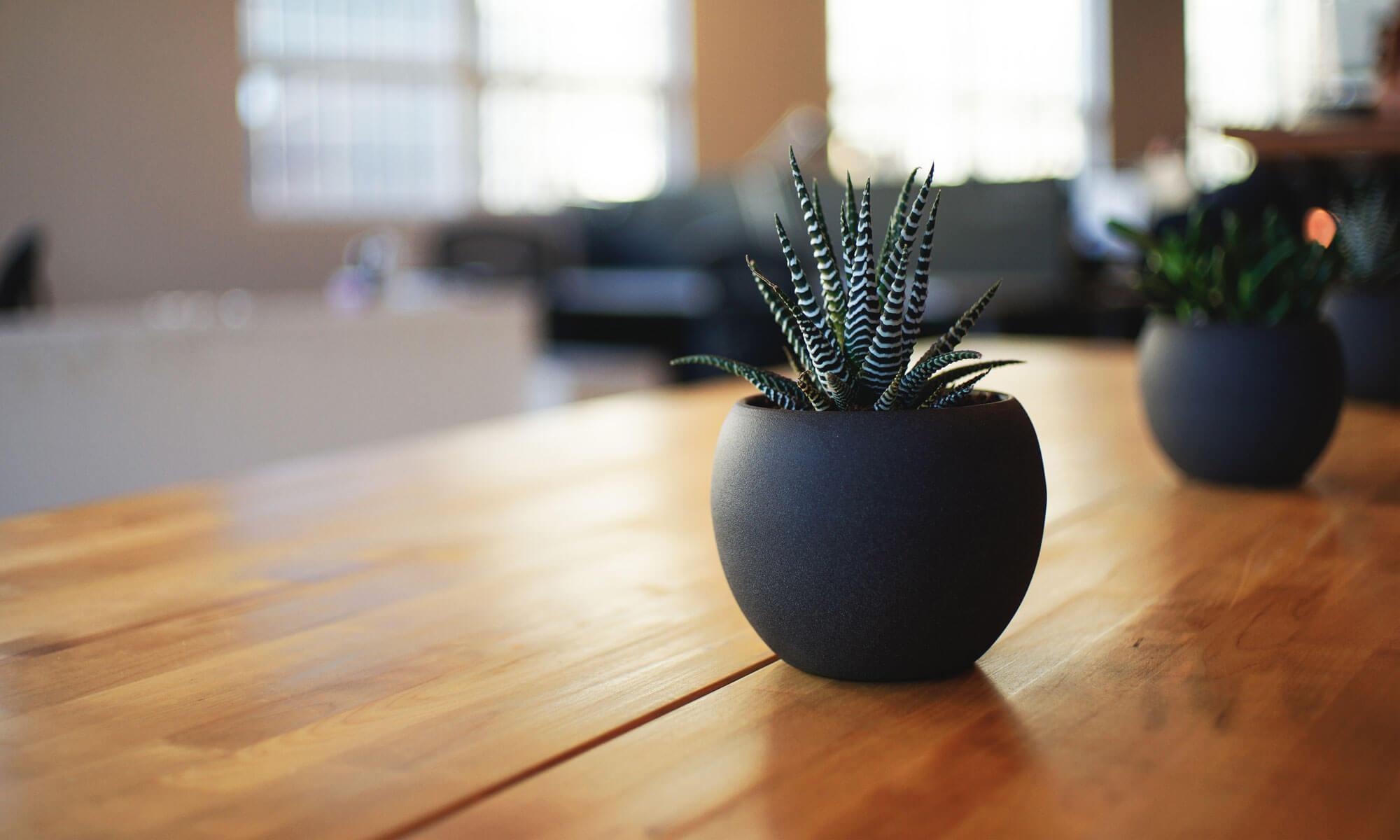 室内空気質と健康住宅のブログ関東支部
